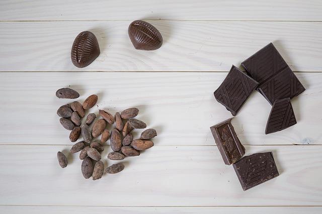 čokoláda a kakaové boby