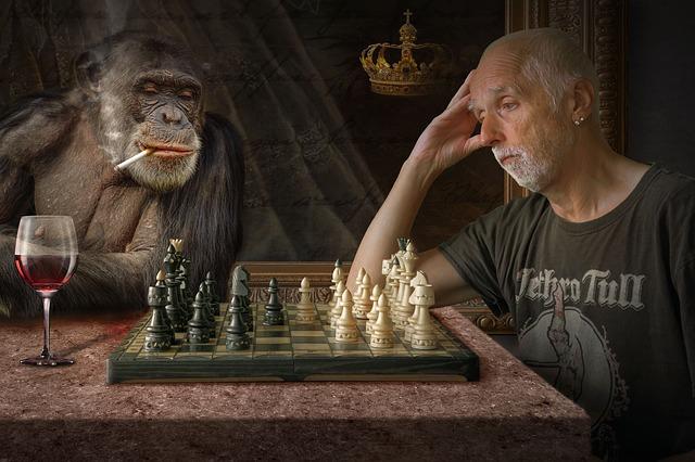 šachy s opicí