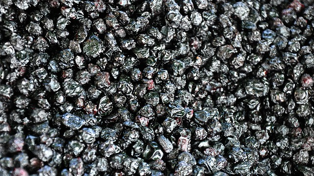 sušené borůvky